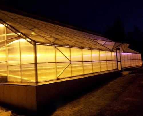 лампы для теплицы зимой цены